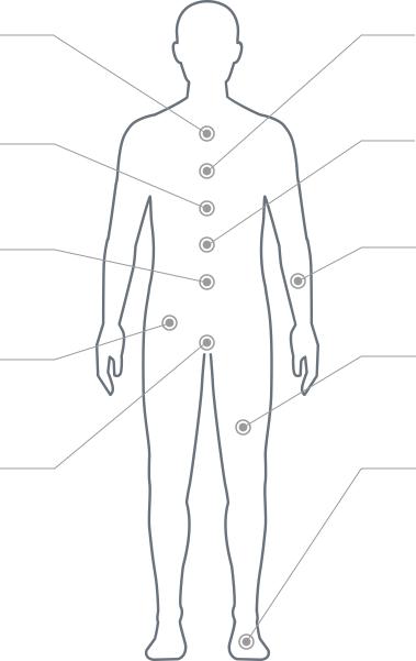 Patient Assessment Body